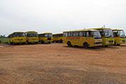 buses 6