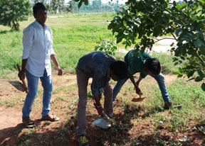 Swachata Pakwada Campagin by Usha Rama Students