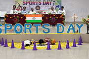 Sports 14